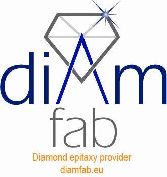 Logo Diam Fab avec baseline